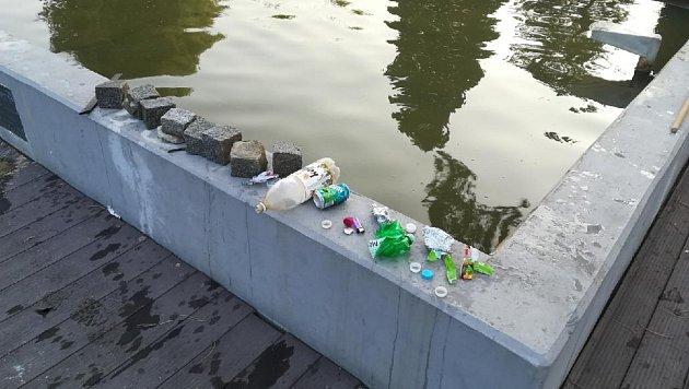 Do nádrže v parku házejí mimo jiné vandalové i kostky.