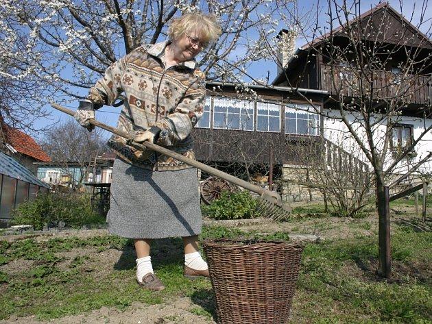 Práce na zahradě. Sadaři zodpovědně opečovávají své zahrádky, na společné práci se domlouvají hůře.