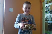 Jakub Žila se svojí želvou Žofinkou.