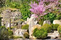 ZOO Zlín se 27. dubna 2020 po šesti týdnech znovu otevřela pro veřejnost. Na snímku japonská zahrada Mu-Shin.