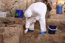 S výzkumem kostelíku ve Štípě pomohli archeologům i studenti oboru antropogenetika. Z kosterních pozůstatků odebrali vzorky, které projdou další analýzou.