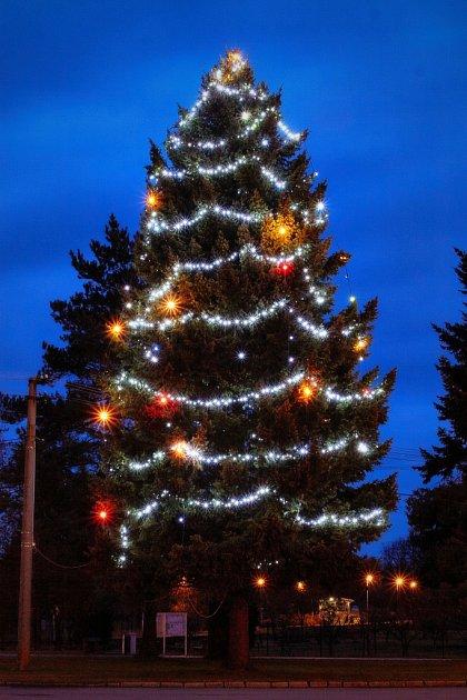 Vánoční strom Jankovice