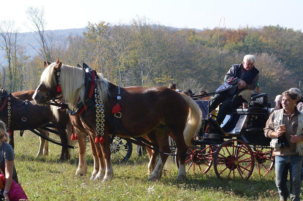 Farma Žlutava. Hubertova jízda 2019. Foto zdroj: Farma Žlutava, autor: Zuzana Péčková.