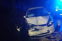Jízdu osobního automobilu ukončil strom.