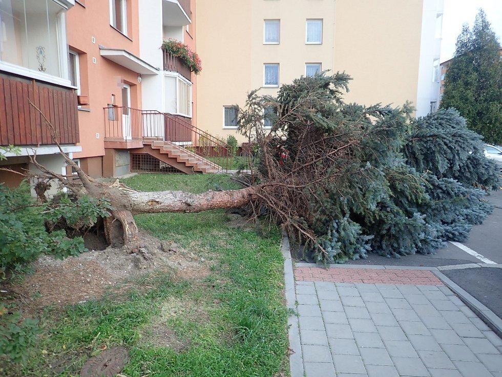 Silný vítr zaměstnává hasiče. Situace v Kroměříži.