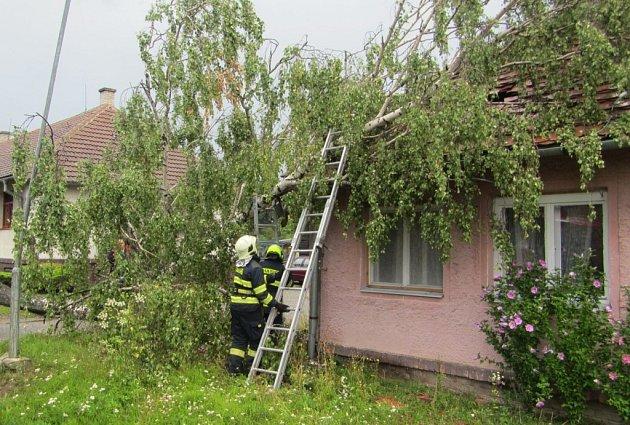 Jeden vyvrácený strom poškodil střechu, druhý zasáhl balkon domu