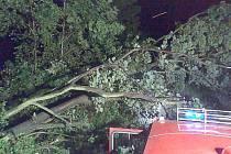 Hasiči vyjížděli na odstraňování spadlých stromů.