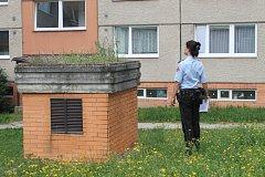 Akce jehla. Strážníci společně s pracovníky městské zeleně procházejí jednotlivá dětská hřiště a hledají, zda na děti náhodu někde nečíhá nebezpečí v podobě odhozené použité injekční stříkačky. Ilustrační foto