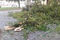 V pondělí 12. září 2016 kolem třetí hodiny ranní se ulomila z dosud neznámé příčiny masivní listnatá větev o průměru asi 30 centimetrů a délce zhruba osm metrů ze vzrostlého kaštanu takřka přímo v centru města.
