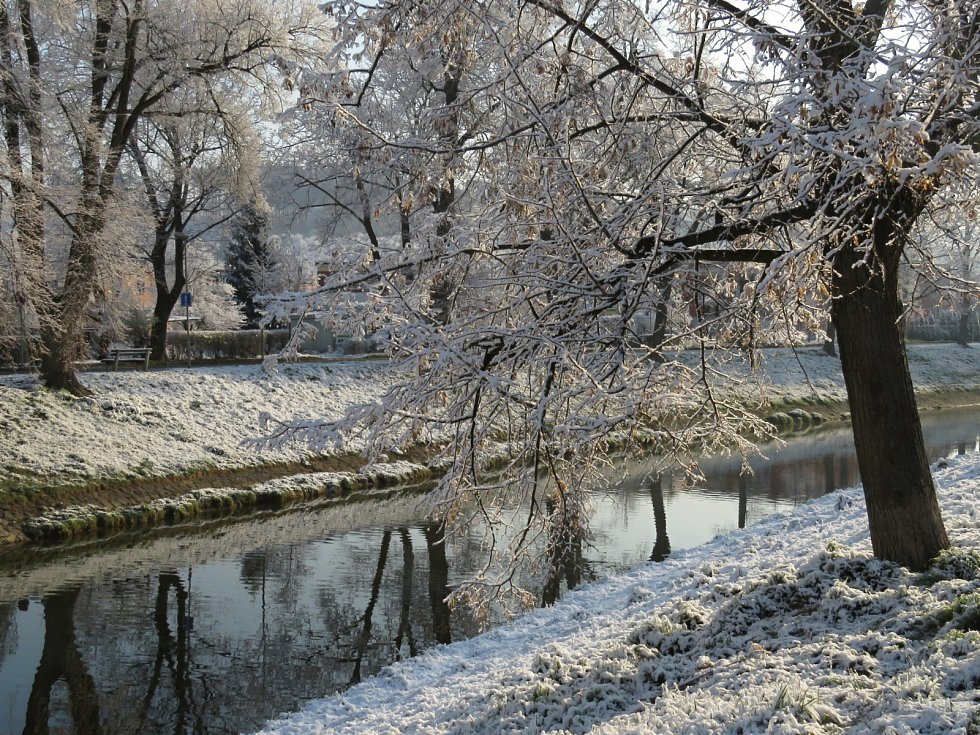 Aprílové jaro, řeka Dřevnice u Podvesné 1. 4. 2020