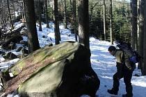 Zasněženým lesem se stopařem velkých šelem