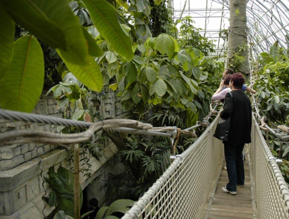 Tropická hala Yucatan v Zoo Zlín byla otevřena v říjnu 2006