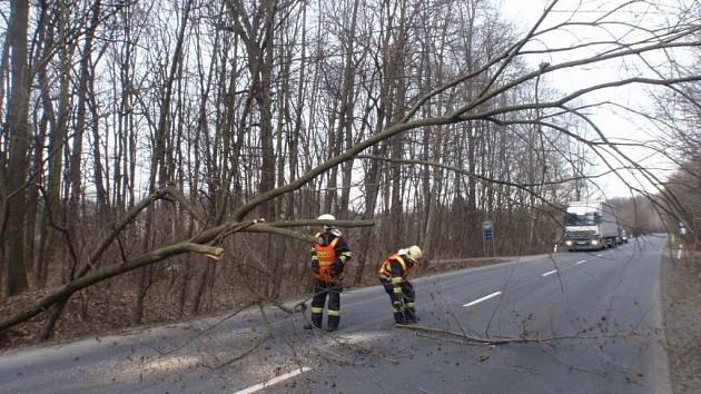 Pády stromů zaměstnávají hasiče v kraji