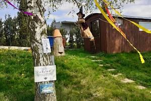 Čarodějnice v Sazovicích.
