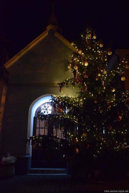Vánoční strom Lípa