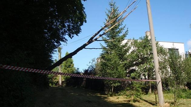Bouřka se silným větrem se prohnala krajem.