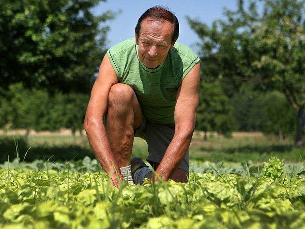 Josef Košař, pěstitel ekozeleniny, nejlepší český zemědělec v biovýrobě za rok 2010