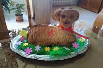Velikonoční beránek.