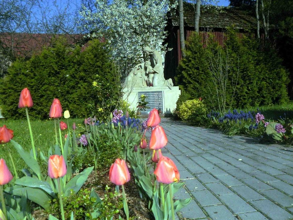 Bohuslavice jsou krásně rozkvetlé.