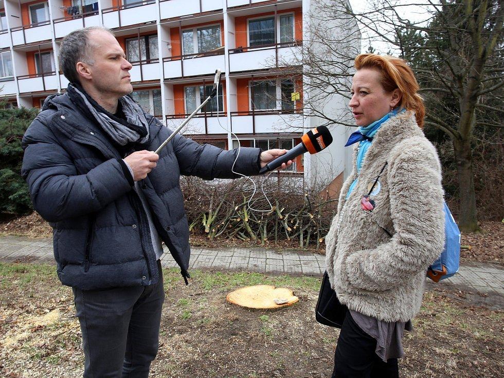 Kácení lip v ulici Družstevní ve Zlíně. Na snímku Světlana Holešovská.