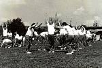 HALENKOVICE, 1990. Snímek je z posledních dvou místních nácviků spartakiády z roku 1990 v Halenkovicích. Další už tam lidé nezažili. Tehdy se konalo cvičení mužů a žen. Spartakiáda byl v Československu název pro hromadná veřejná tělocvičná vystoupení.