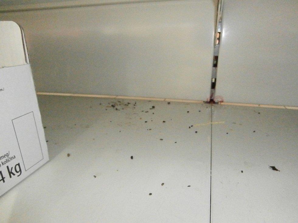 Pasti na myši a myší trus pod a v regálu (slané pečivo)  - ilustrační fotografie.