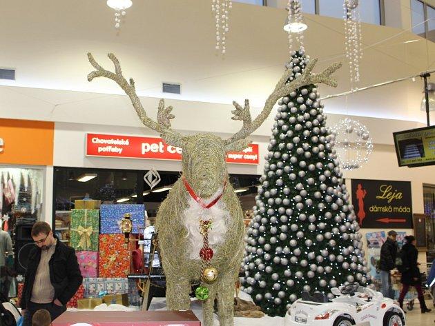 Vánoční nákupy ve Zlíně.