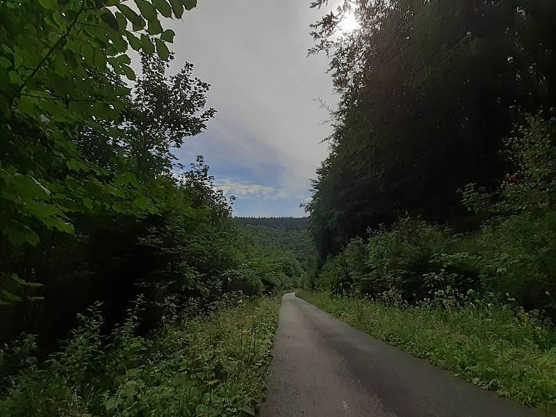 Lesy v okolí rozhledny Lopeník na Uherskohradišťsku.