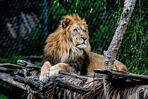 Na návštěvě v Zoo Zlín.