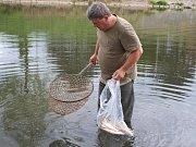 Úhyn ryb v Dřevnici: Je za ním noční bouřka i mizerný stav vody