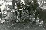 ROK 1978. Kování koní. Na snímku je kovář František Slezáček a Josef Vrla.