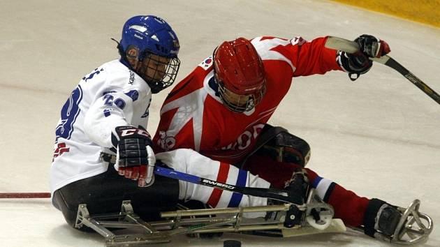 Sledge hokej - ČR vs. Korea