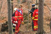 Tragický pád stromu v lese u Březnice.