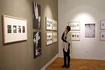 Výstava Alex Beran Zlínské odpoledne, kresby a fotografické experimenty v galerii Václava Chada ve Zlíně.