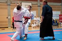 Ilustrační foto ze závodů v karate. Na snímku zápas kumite mezi Petrem Lysoňkem a Jindřichem Mašláňem (zleva) - oba Akademie karate Zlín