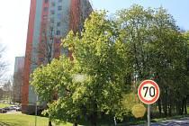 Na úseku zhruba 500 metrů téměř na začátku Otrokovic ve směru od Bělova mohou řidiči jezdit sedmdesátkou. Obyvatelům tamní ulice Štěrkoviště se to ale nelíbí, trápí je hluk v nočních a brzkých ranních hodinách. Požadují zpátky snížení rychlosti na padesát