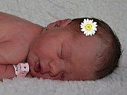 Rozálie Šímová ze Zlína se narodila 11.4.2012, 50 cm a 3490 g