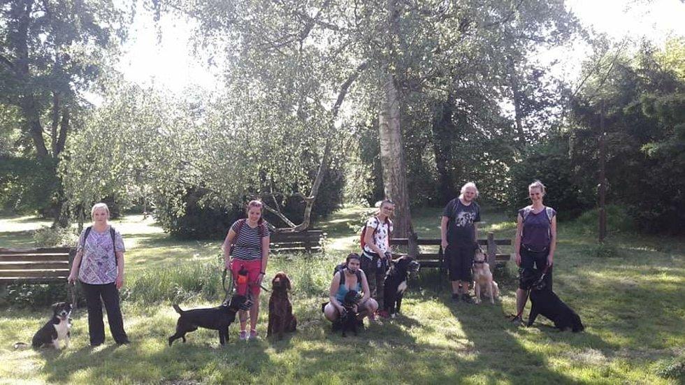 Skupina dobrovolníků na procházce se psy
