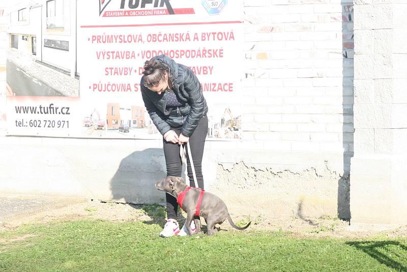 Ve šlágru 10. kola fotbalového krajského přeboru remizovala Napajedla (v červeném) s Baťovem 2:2, když domácí dokázali smazat dvoubrankové manko.