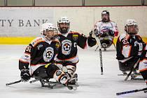 Sledge hokejisté Zlína se v sobotu utkají doma s Havířovem.