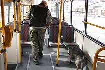 Cvičení policistů se psy v trolejbuse DSZO Zlín