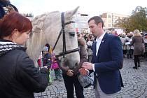 Do Zlína zavítal svatý Martin na bílém koni. Svatomartinskou tradici zajišťují děti ze zlínské ZUŠ.