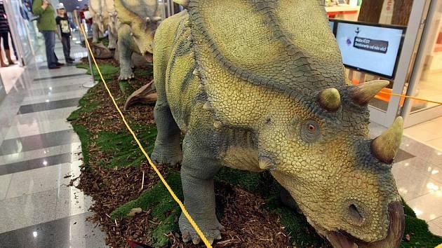 Zlínské obchodní centrum Zlaté jablko láká od pátku 8. října návštěvníky na výstavu dinosaurů z expozice dinoparku z Ostravy.