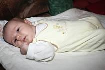 Lucie Pelánková, 26. 11. 2007, porodní míry: 2,89 kg, 46 cm, Zlín