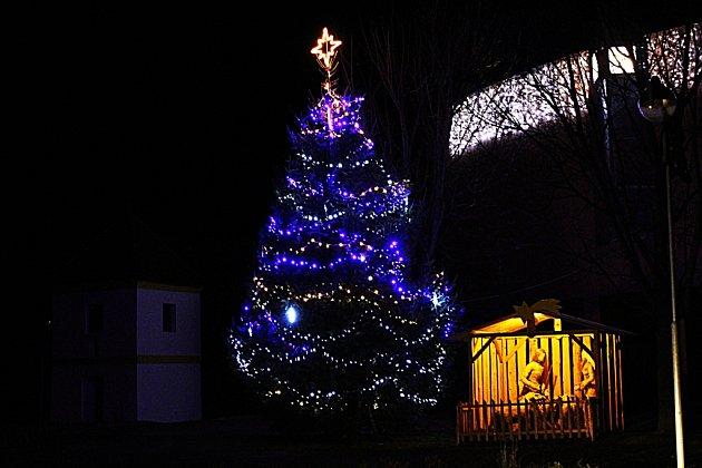 Vánoční strom Traplice