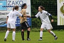 SK Březnice vs. FK Holešovské holky podzim 2013
