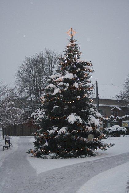 Vánoční strom Újezd