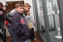 Jako jedna z nejlepších ochran proti nenechavcům se osvědčily vitríny ze skla.