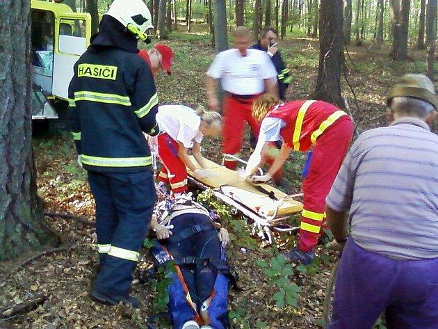 Neštěstí na Kudlově. Při kácení stromů došlo k pádu jednoho z nich na ženu, která byla velmi vážně zraněna.