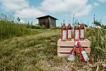 Vinařství Kněží hora Kamily Ingrové